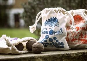 Seed Bombs -- Fii gradinar de gherila!