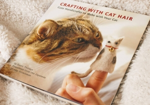 Crafting with cat hair -- Servus pisi, ai par de oferit?