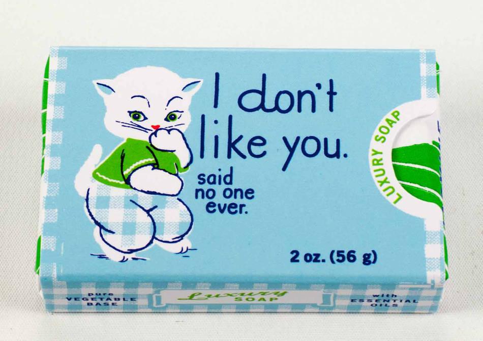 I don't like you - Ce nu vei auzi, ever!