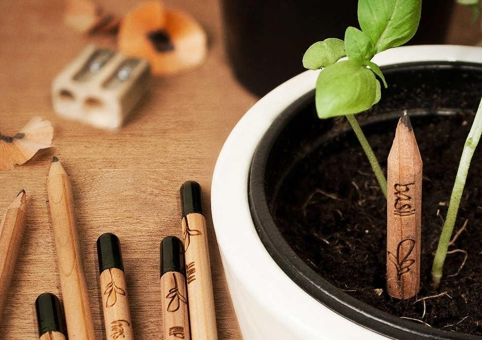 Creioane Sprout -- Verde pentru verbe!