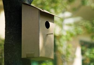 Casa pentru pasari ECO -- O fapta buna, o pasare fericita