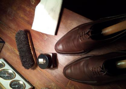 The Cool Shoe Shine -- Kit de intretinere incaltaminte