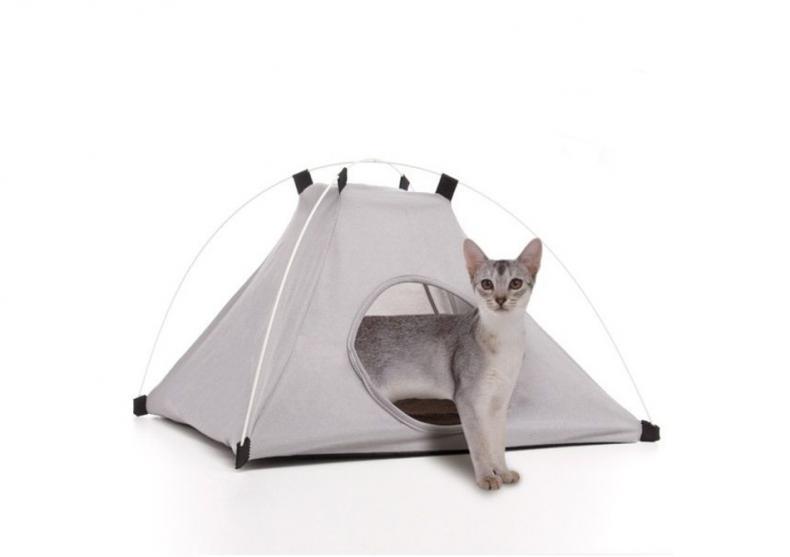 Cort pentru animale -- Camping de patrupezi image