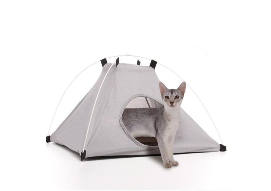 Cort pentru animale -- Camping de patrupezi
