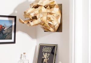 Masca Game of Thrones  -- Geometrie impregnanta