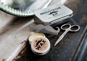 Trusa mustatii perfecte  -- pastreaza-ti standardele ridicate