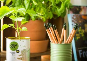 8 creioane Sprout grafit -- CADOU carte de colorat si penar