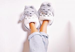 Papuci de casa Totoro -- Paseste in lumea basmelor japoneze!