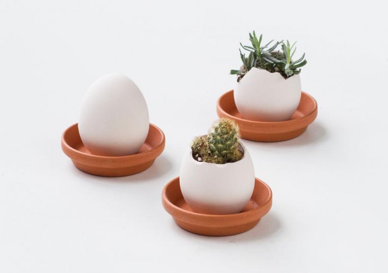 Egglings -- Eggcelente image