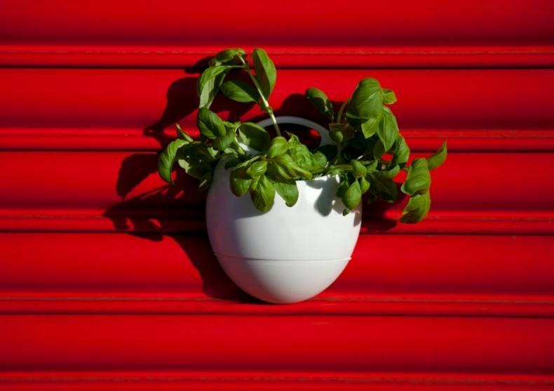 Set EcoPod  -- Gradina lui Semiramis la tine acasa. image