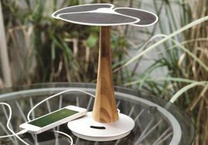 Ginkgo Solar -- Energie...altcumva