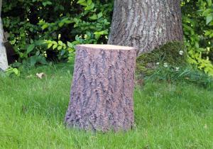 Scaun trunchi copac -- Arata atat de real...
