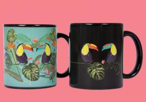 Cana tropicala -- Dimineti ca in Rio de Janeiro