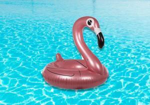 Flamingo roz perlat -- Viata e roz!