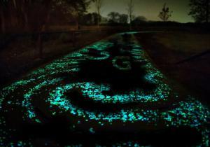 Glowies XXL -- Calea ta, spre orasul de Smarald