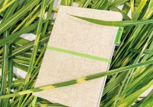 Agenda Bamboostic -- Intoarce-te la natura