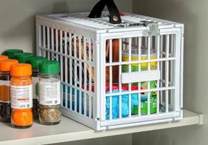 Seif pentru frigider -- Tine-ti alimentele in siguranta