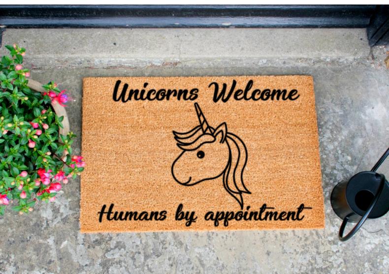 Unicorns Welcome -- Oamenii doar cu programare image