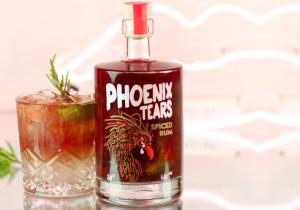 Lacrima de Phoenix -- Ridica-te din cenusa