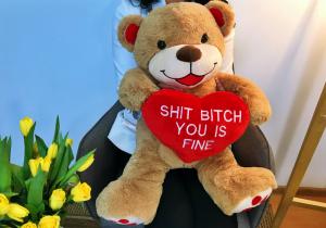 Ursulet explicit -- Pufos si cu mesaj puternic