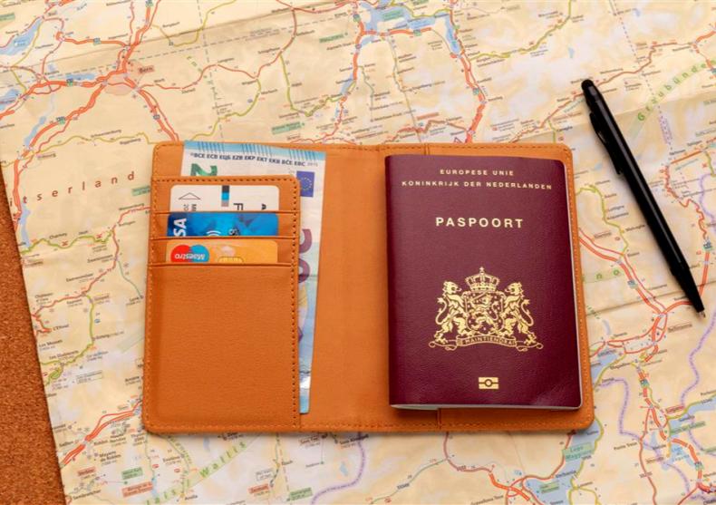 Husa pasaport Cork -- tehnologie naturala image