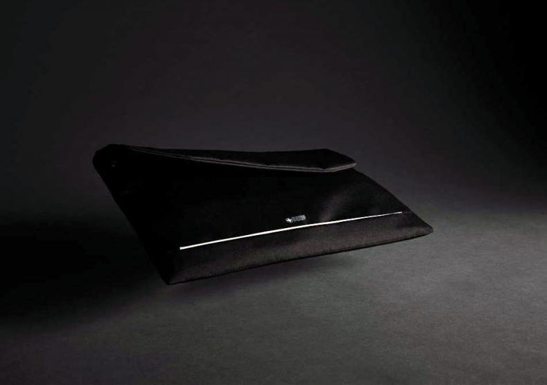 Swiss Peak husa laptop -- mega dotat image