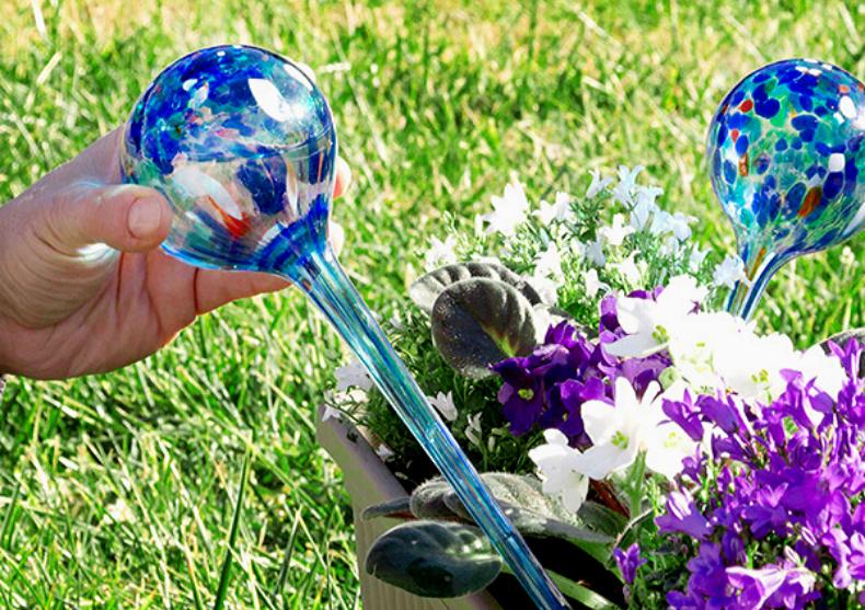 Aqua Loon – Ingrijire, stil si plante sanatoase image