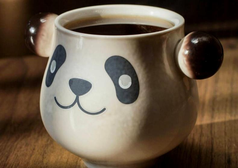 Misteriosul Panda -- Ursulet negru sau panda? image