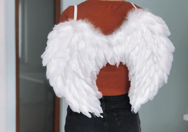The Wings -- accesoriul costumului tau image