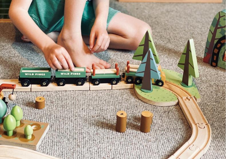Set tren in padure cu brazi -- o intreaga experienta image